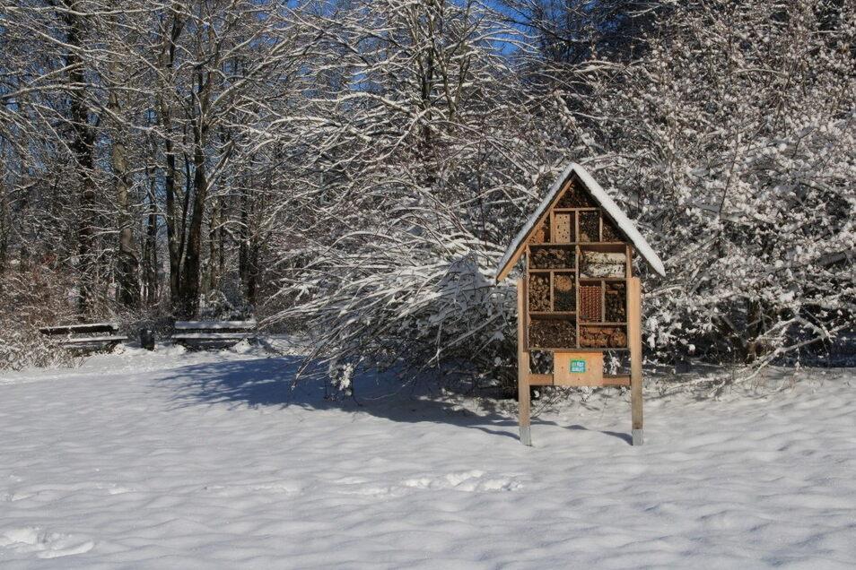 Im Bienenhotel am Görlitzer Friedhofseingang herrschte bis Mitte des Monats auch Ruhe. Am Monatsanfang war es noch sehr kalt.