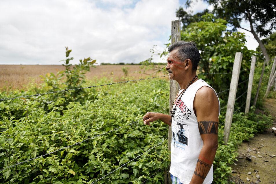 Paulo da Silva Bezerra, Dorfbewohner von Açaizal, blickt von der Umzäunung seines kleines Hofes auf ein direkt angrenzendes Soja-Feld. Wenn Pflanzengifte versprüht werden, trägt diese der Wind bis in die Häuser.