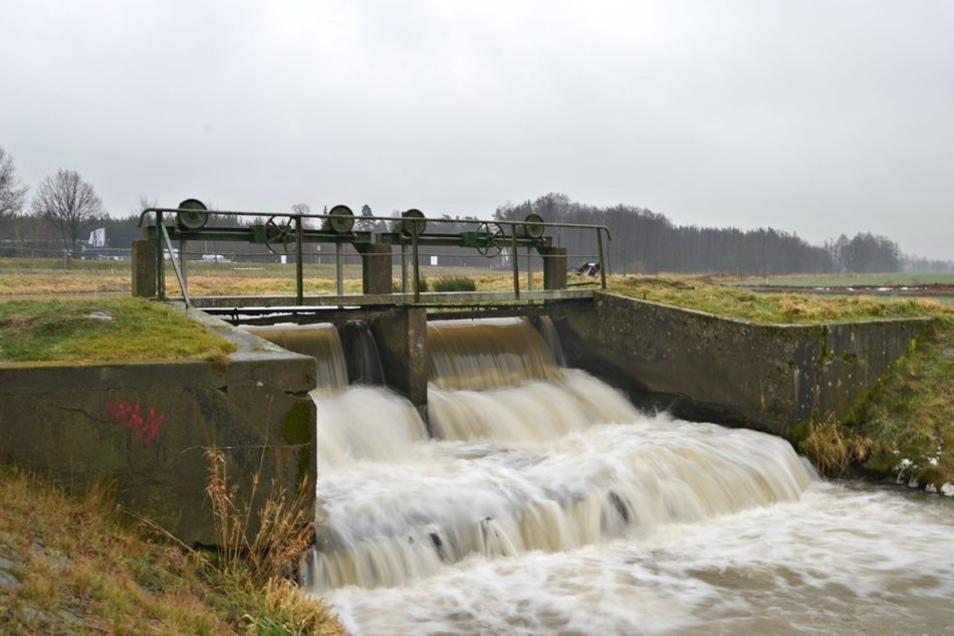 Das alte Niesendorfer Wehr ist schon lange marode. Es wird nun abgerissen und durch eine Fischtreppe ersetzt. Die Ufer werden erweitert. Das dient vor allem dem Hochwasserschutz.