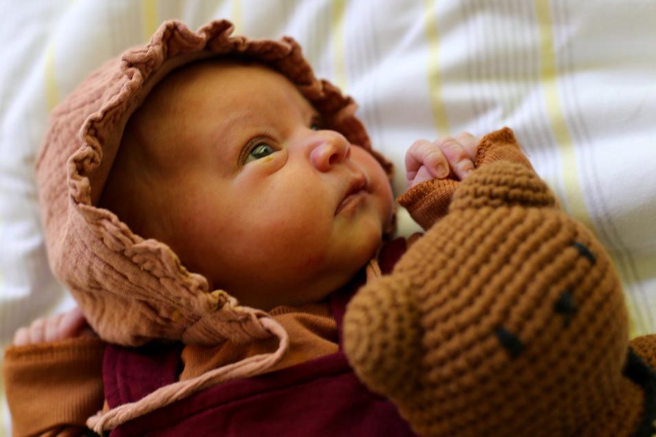 Millie Grete Börner, geboren am 5. April, Geburtsort: Universitätsklinikum Dresden, Gewicht: 3.560 Gramm, Größe: 51 Zentimeter, Eltern: Jessica und Dirk Börner, Wohnort: Dresden