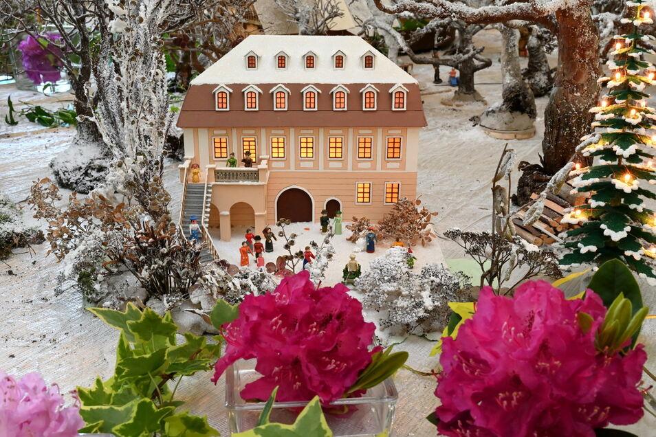 Das Landschloss Zuschendorf als Olbernhauer Lichterhaus mitten im Schnee – davor sommerliche Rhododendron-Blüten.