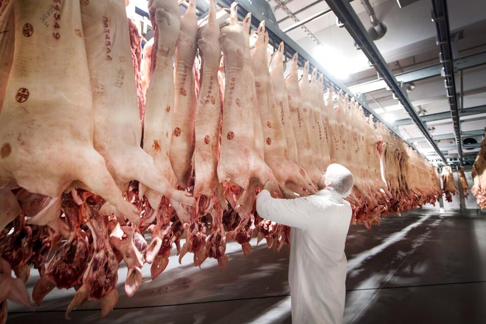 Geschlachtete Schweine hängen in einem Kühlhaus des Fleischunternehmens Tönnies. Bei dem Schlachtereibetrieb in Rheda-Wiedenbrück sind seit Anfang der Woche mehr als 730 Mitarbeiter positiv auf das Coronavirus getestet worden.