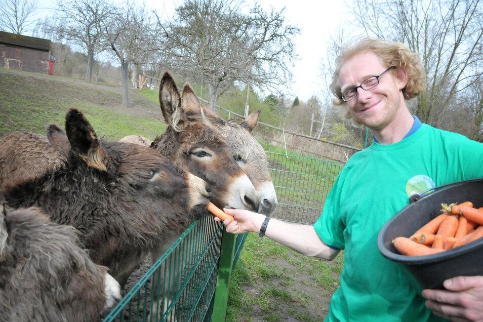 Ein Bild aus besseren Tagen. Sven Näther beim Füttern der Esel.