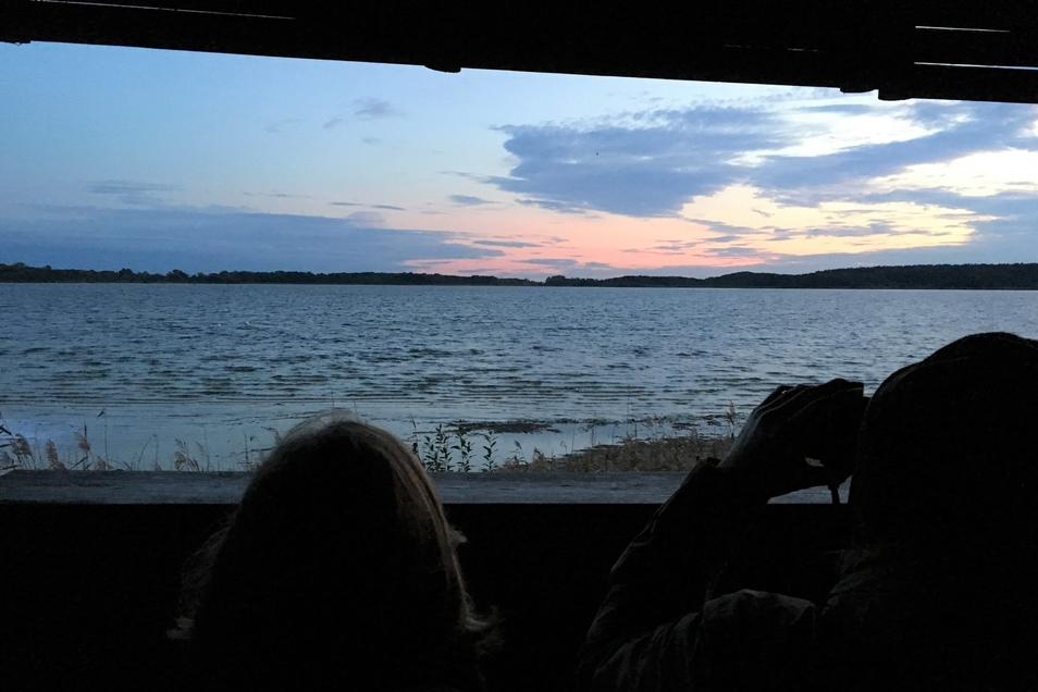 Fernglas dabei: Auf der überdachten Aussichtsplattform am Rederangsee lässt sich auch unter Wolkenbergen auf die Kraniche warten. Sie übernachten in den Uferbereichen.