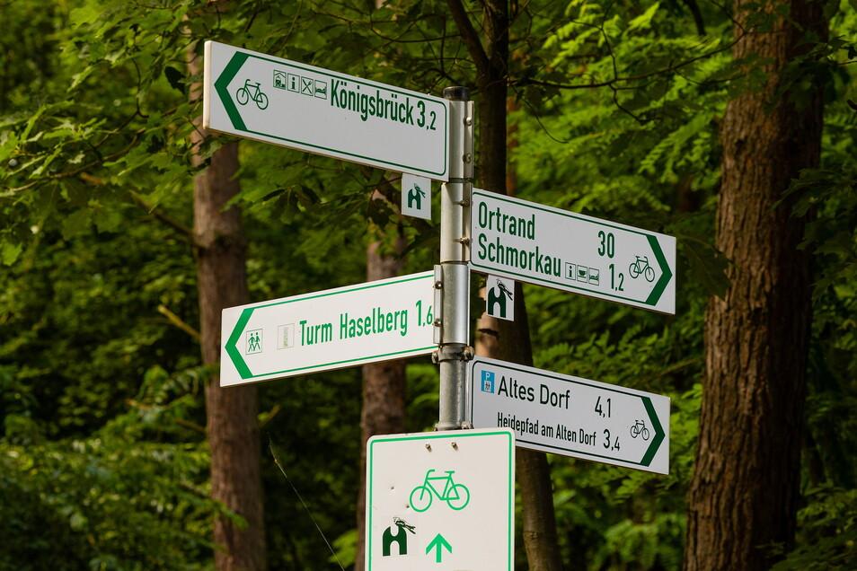 Ein rund 56 Kilometer langer Wander- und Radweg führt um die Königsbrücker Heide herum.