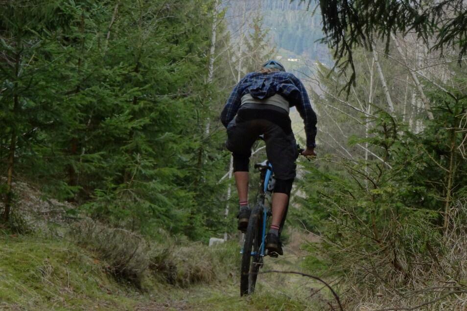 Haben Mountainbiker Schäden in einem Waldstück bei Gohrisch angerichtet? Ein Fall fürs Gericht.