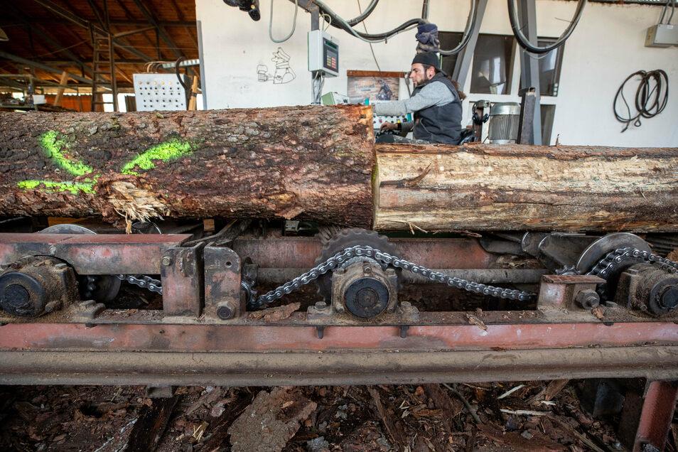 Stefan Arndt bugsiert Fichtenstämme ins Vorschnittgatter. Sieben- bis achttausend Festmeter Holz verarbeitet Räntzsch im Jahr.