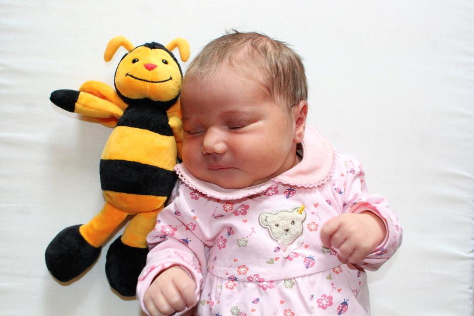 Adina, geboren am 1. April, Geburtsort: Universitätsklinikum Dresden, Gewicht: 3.740 Gramm, Größe: 52 Zentimeter, Eltern: Ariane und Markus Jährling, Wohnort: Dresden