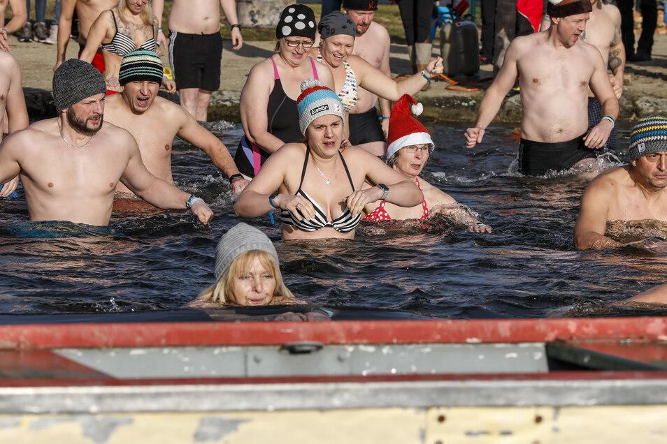 Rund 40 Teilnehmer wagten sich beim Eisbaden im Waldstrandbad Großschönau ins Wasser.