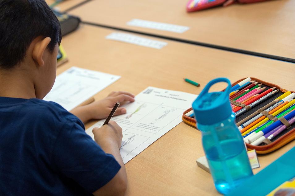 Dresdens Schüler kehrten an diesem Montag auf die Schulbänke zurück. Wie klappte der Start ins neue Schuljahr?