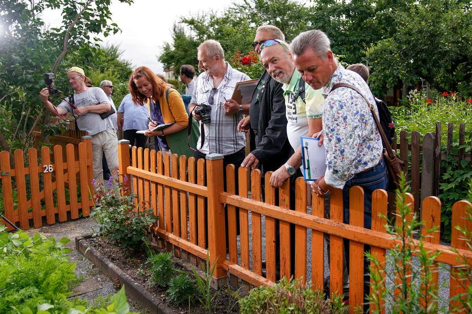 Beim Jury-Rundgang im Striesener Kleingartenverein Flora I war viel anerkennendes Nicken zu sehen.