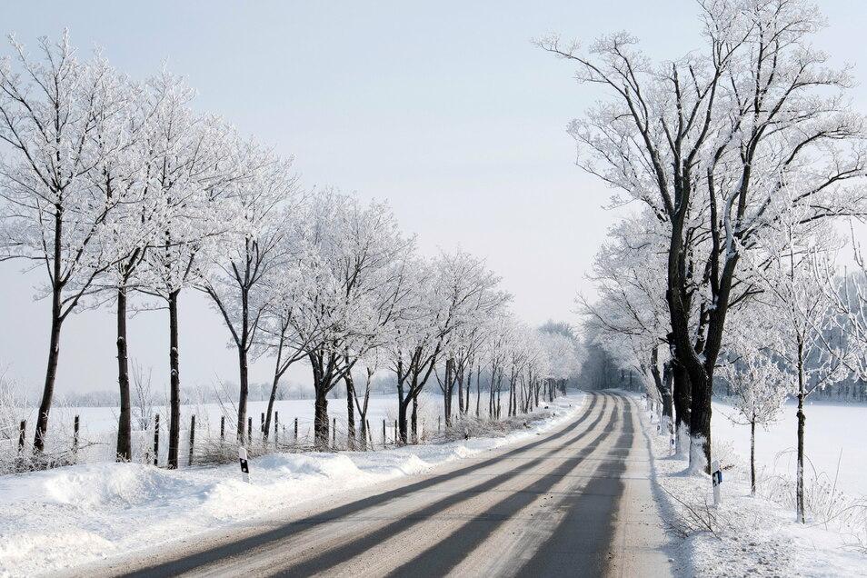 Die Straße von Arnsdorf-Hilbersdorf in Richtung Königshain präsentiert sich besonders malerisch.