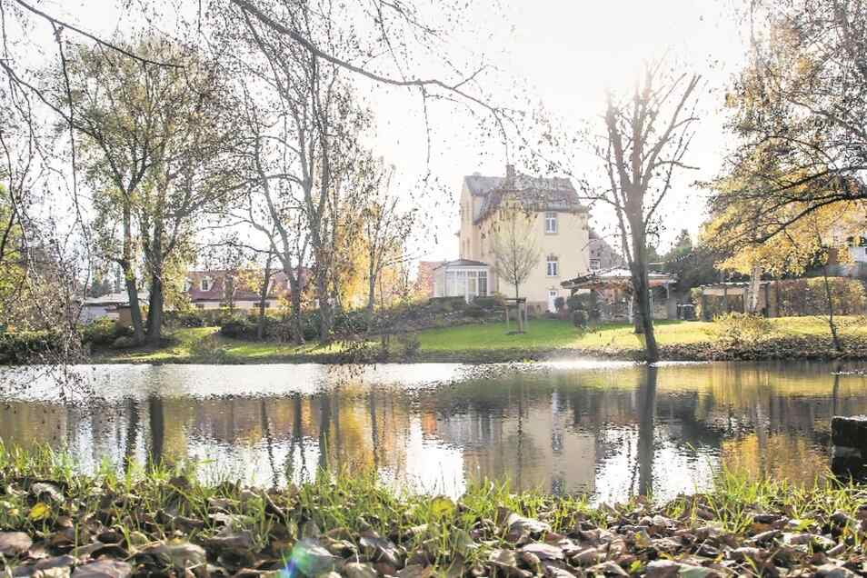 Der vordere Teich im Schlosspark Niederjahna. Der Park soll nun mit Fördermitteln nicht nur nach dem Hochwasser saniert, sondern zu einem aktiven Generationenpark umgestaltet werden.
