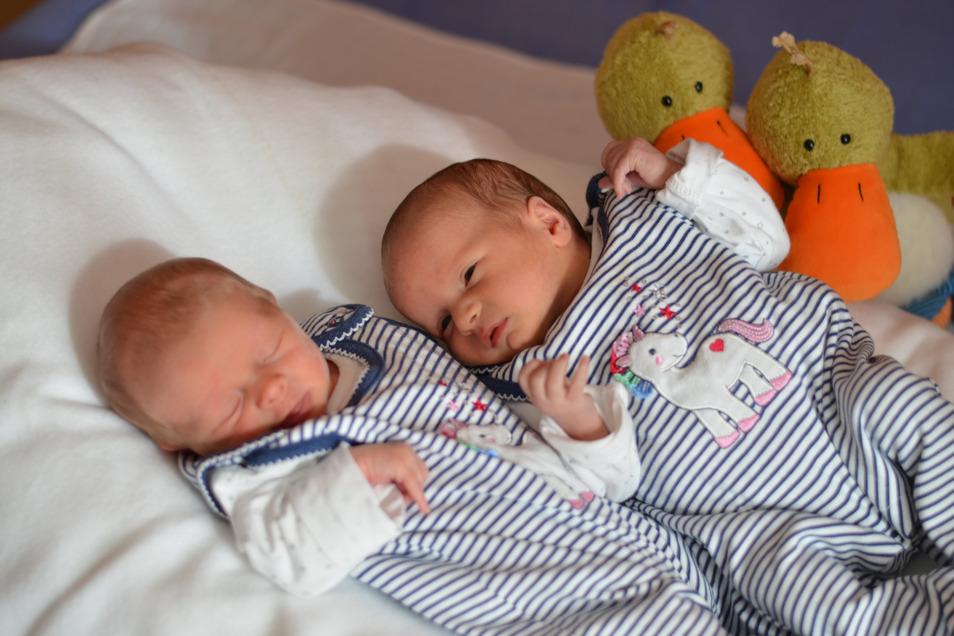 Laura und Frida, geboren am 4. Mai, Geburtsort: Dresden, Gewicht: 2.360 und 2.685 Gramm, Größe: 48 und 46 Zentimeter, Eltern: Lisa Angermann und Alexander Mauksch, Wohnort: Großerkmannsdorf