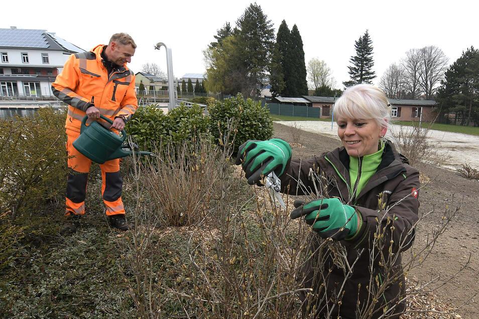 Die Stadtgärtner Katrin Geißler-Haberer und Steffen Holz haben im Leisniger Freibad nach dem Winter ordentlich aufgeräumt und einen Hang neu gestaltet und bepflanzt.