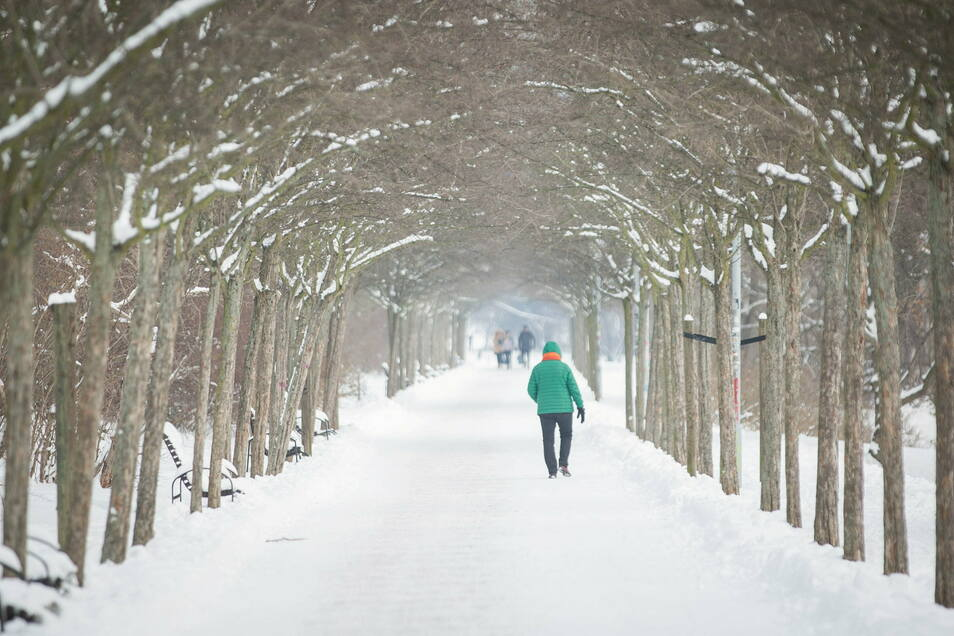 Knackig kalt, Sonnenschein, wenig Neuschnee - so soll das Wetter am Wochenende in Dresden werden.