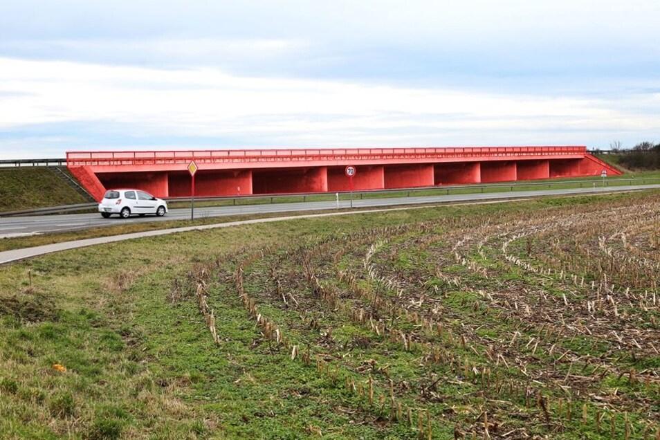 Die Montage zeigt, wie die B169 in Zukunft aussehen könnte: Es gibt Planungen, zwei Spuren – die Fahrbahn in Richtung Röderau – zu erhöhen. Dann würden künftig nur noch die Fahrspuren Richtung Riesa überschwemmt.