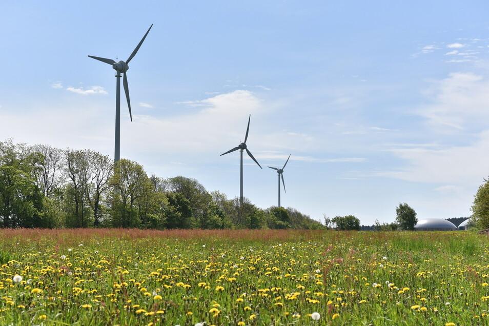 Diese Windräder steht schon im Dippser Ortsteil Hennersdorf. Über geplante weitere Anlagen gibt es Debatten.