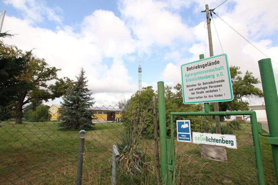 Die Agrargenossenschaft Grünlichtenberg plant den Neubau einer Halle in Reichenbach. Die Gemeinderäte haben dem Bauantrag jetzt ihr Einvernehmen erteilt.