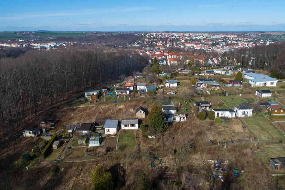 Große Lücken gibt es in der Gartenanlage Schillerhöhe. Ein Teil der Gärten sind nicht verpachtet. Jetzt geht der Gartenverein daran, alte Lauben abzureißen und die Flächen zu beräumen.