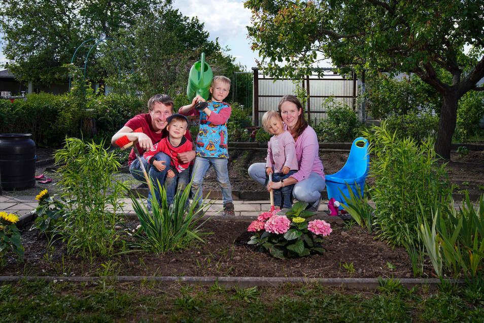 Familie Hahn sammelt in diesen Wochen ihre ersten Kleingarten-Erfahrungen.