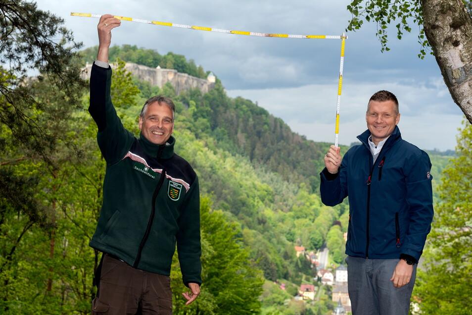 Nehmen für den Landschaftsbilderrahmen Maß: Uwe Borrmeister (li.), Leiter des Forstbezirkes Neustadt und Königsteins Bürgermeister Tobias Kummer.