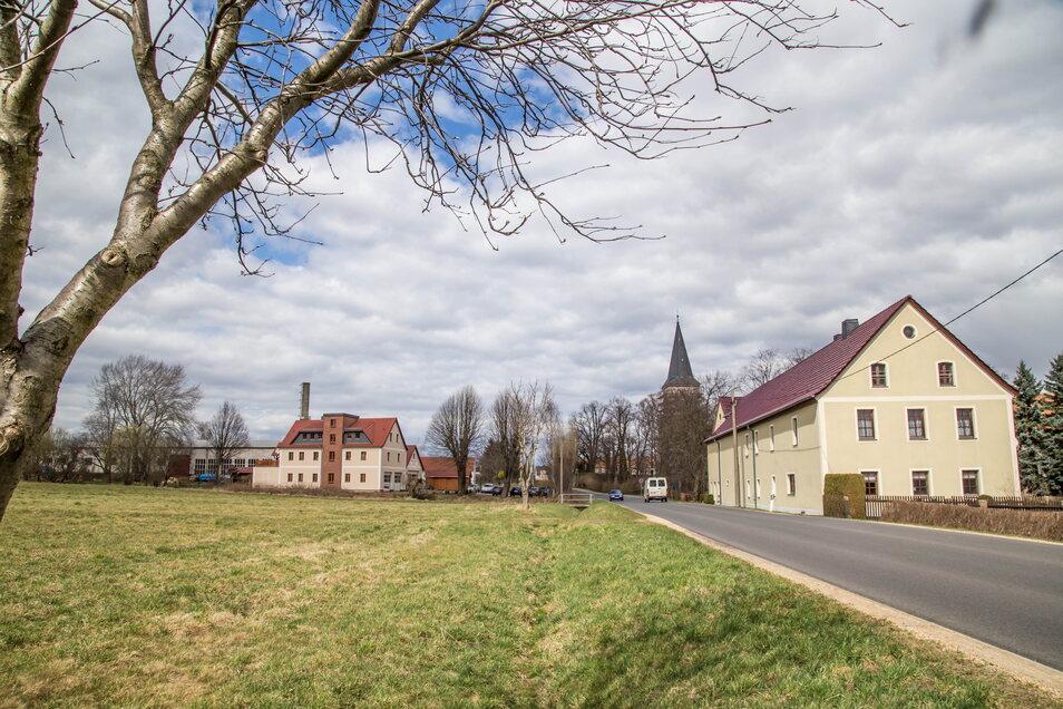 Auf diesem Gelände an der Torgaer Straße in Kodersdorf sollen Bauplätze für bis zu acht Eigenheime entstehen. Noch in diesem Jahr beginnen die Erschließungsarbeiten.