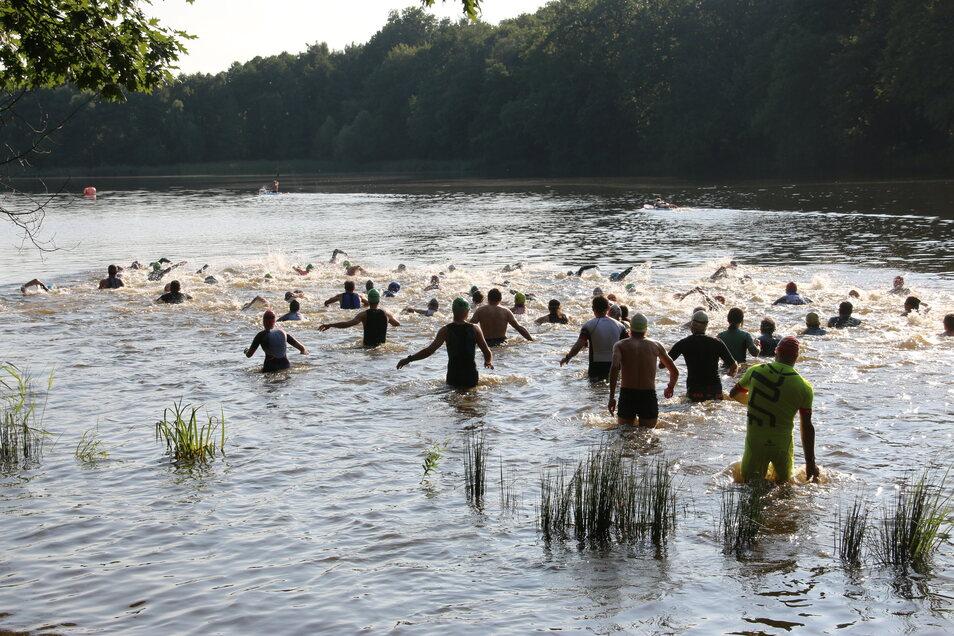 86 Aktive gingen beim Triathlon am Brettmühlenteich an den Start.