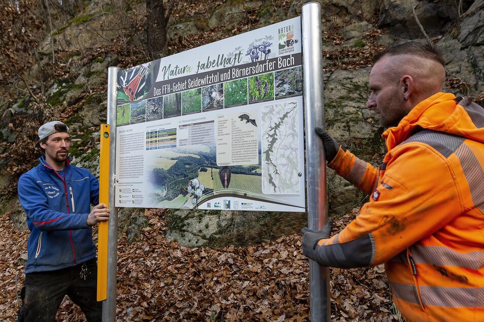 Neue Infotafeln im Seidewitztal stellen hier Toni Hirschel (l.) und René Fleischer von der Firma Straßenbau Krönert auf.