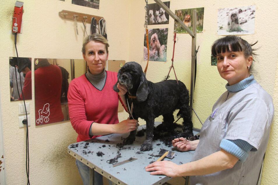 Noch arbeiten Monika Roscher (l.) und Grit Robitzsch Hand in Hand. Ab März führt Monika Roscher den Hundesalon an der Bautzener Steinstraße alleine.