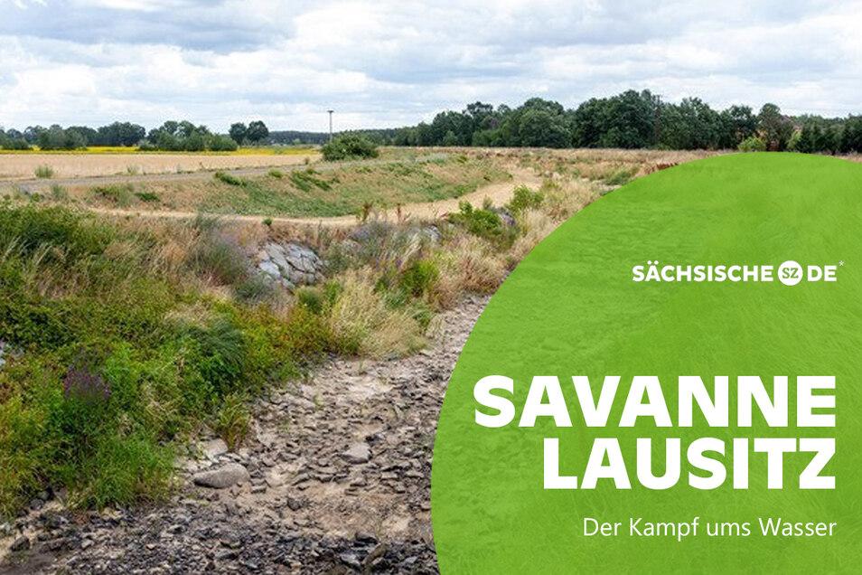 Wie schon im Juli ist die Schwarze Elster bei Täschwitz im Landkreis Bautzen erneut ausgetrocknet.