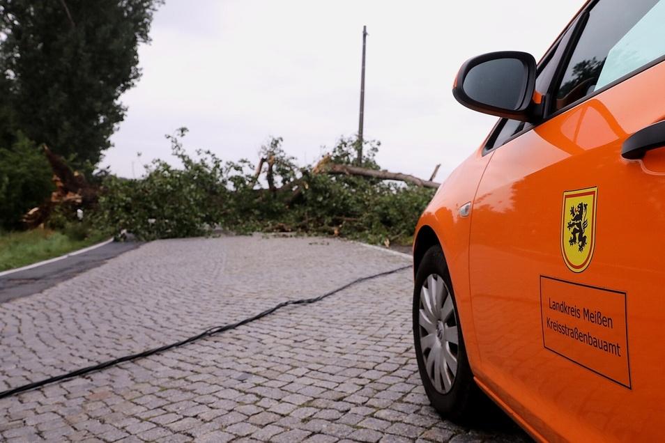 Am Ortsausgang Radeburg in Richtung Tauscha liegt ein Baum quer auf der Straße.