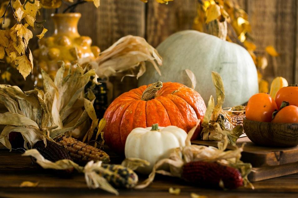 Neben dem absoluten Klassiker Kürbis können sich noch viel mehr herbstliche Gemüse- und Obstsorten sehen lassen.