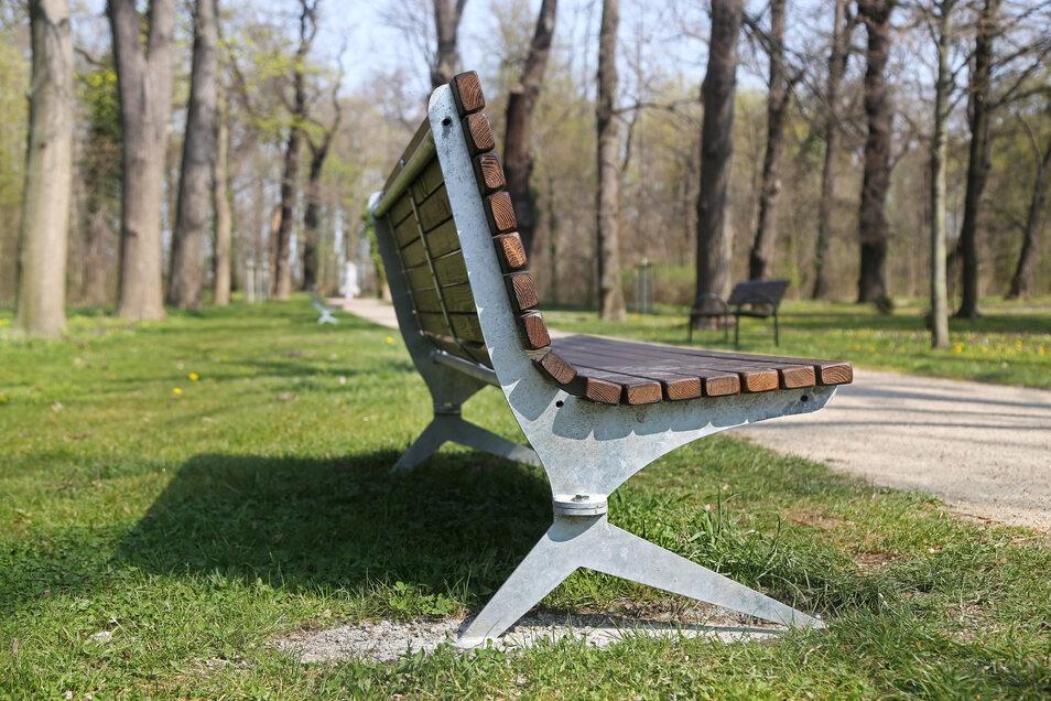 Im Stadtpark Riesa stehen bereits fünf neue Bänke. Die Verwaltung hat noch eine Reihe weiterer Standorte im Blick.