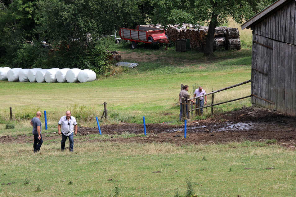 Polizisten in Zivil stehen auf einer Weide, auf der zuvor ein Stier zwei Menschen getötet hatte.