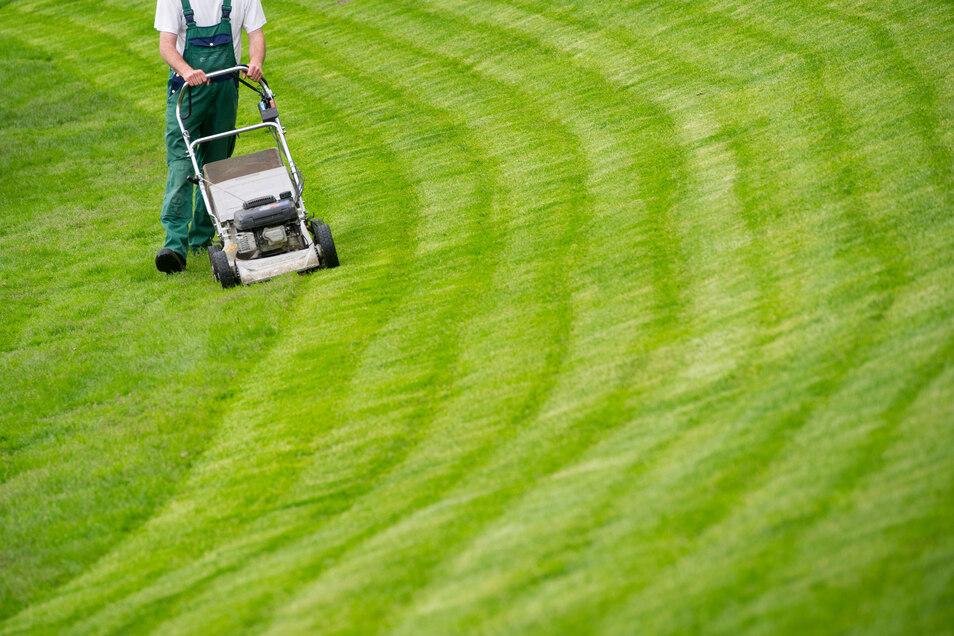 Rasenmähen kann anstrengend sein - auch wenn es der Nachbar tut.