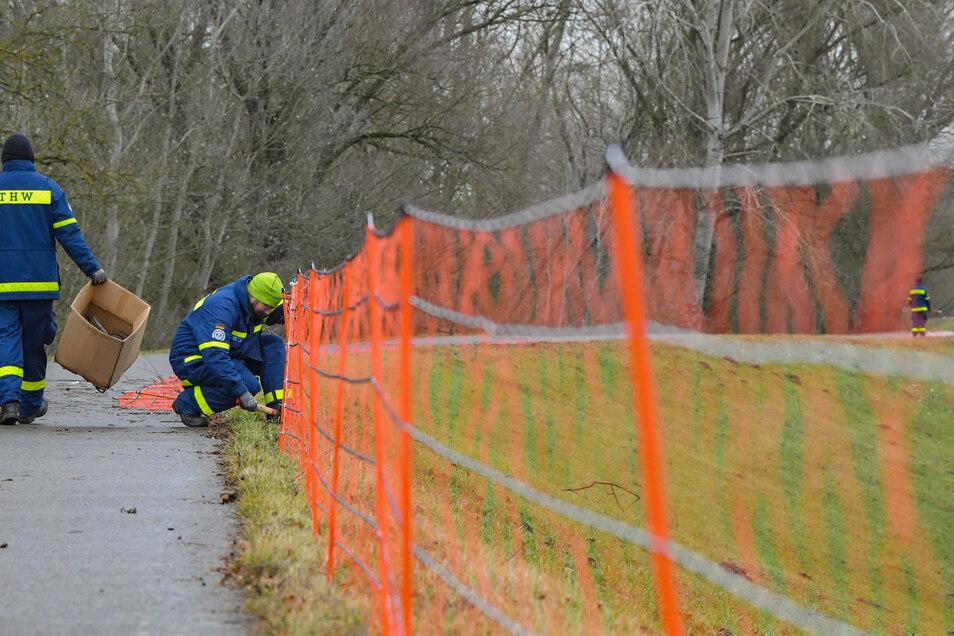 Das THW errichtet die Wildschwein-Barrieren entlang der deutsch-polnischen Grenze.
