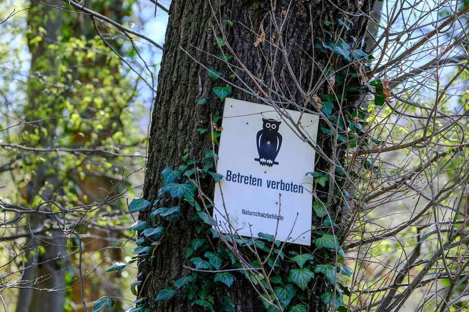 Auf Schildern an Bäumen steht: Betreten verboten.