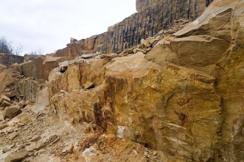 In diesem Steinbruch an der Lohmener Mühlleite werden die Sandsteine für die Augustusbrücke gebrochen.