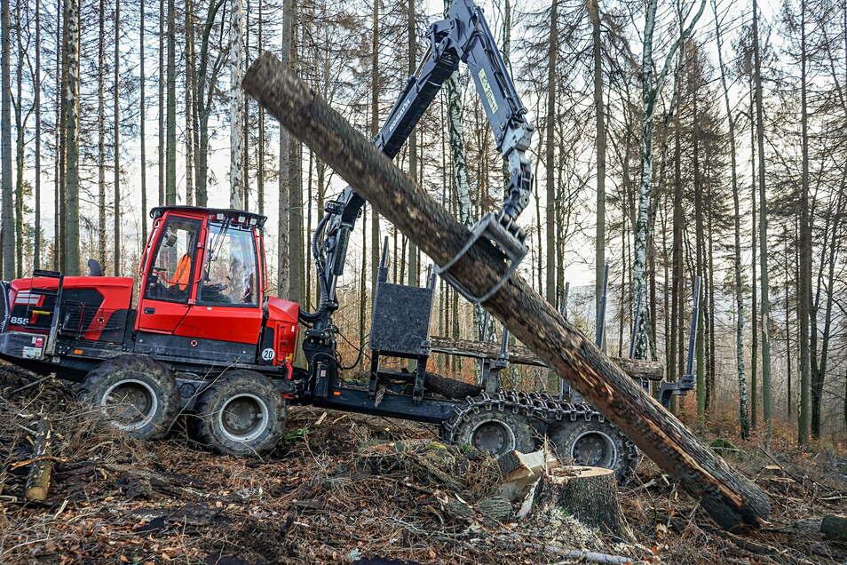 Bei Waldarbeiten am Picho ist ein Mann verletzt worden.