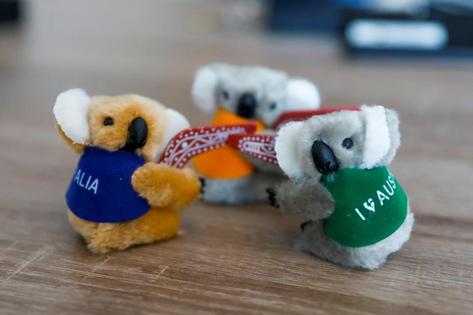 Ein pelziges Souvenir: Bei einer Recherche erhielt SZ-Redakteurin Romy Altmann-Kühr diese kleinen Koalas. Sie erinnern sie an eigene Erlebnisse.