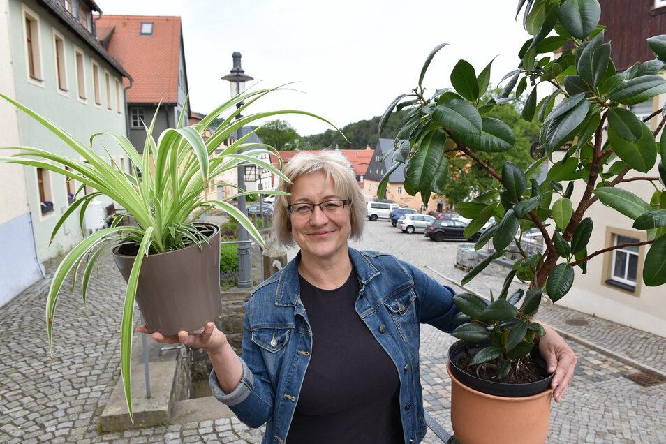 Katrin Küttner half auch dabei mit, die Eishalle in Geising mit Grünpflanzen zu schmücken, damit dort eine kirchliche Veranstaltung stattfinden kann.