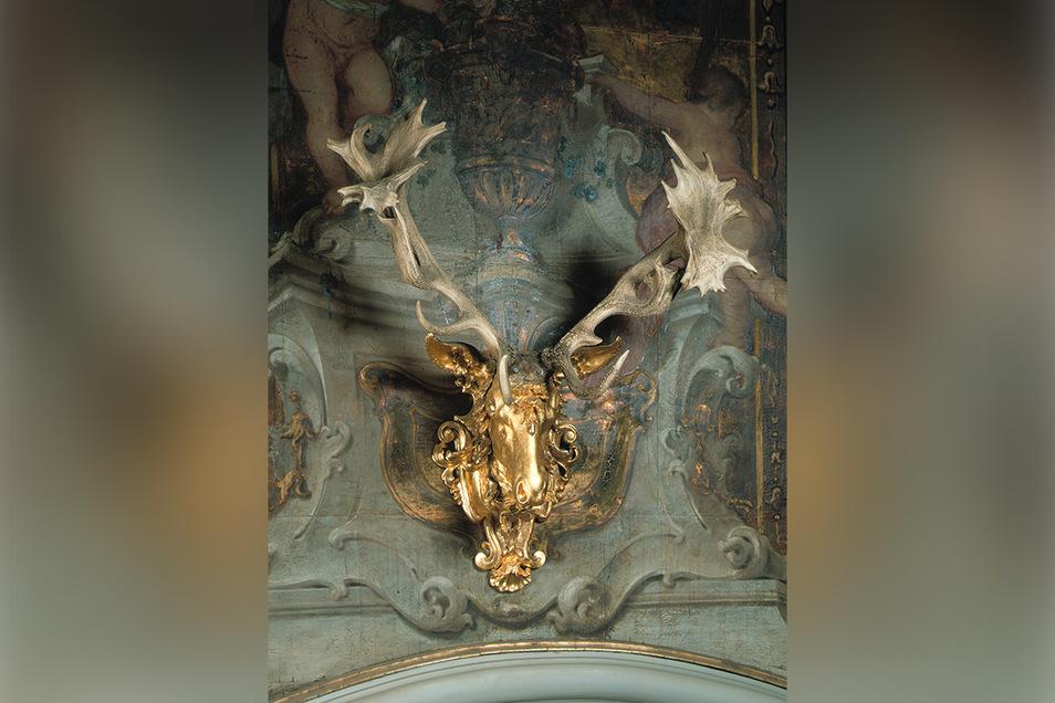 Über einer Tür im Monströsensaal ist der berühmte Moritzburger 66-Ender zu sehen.