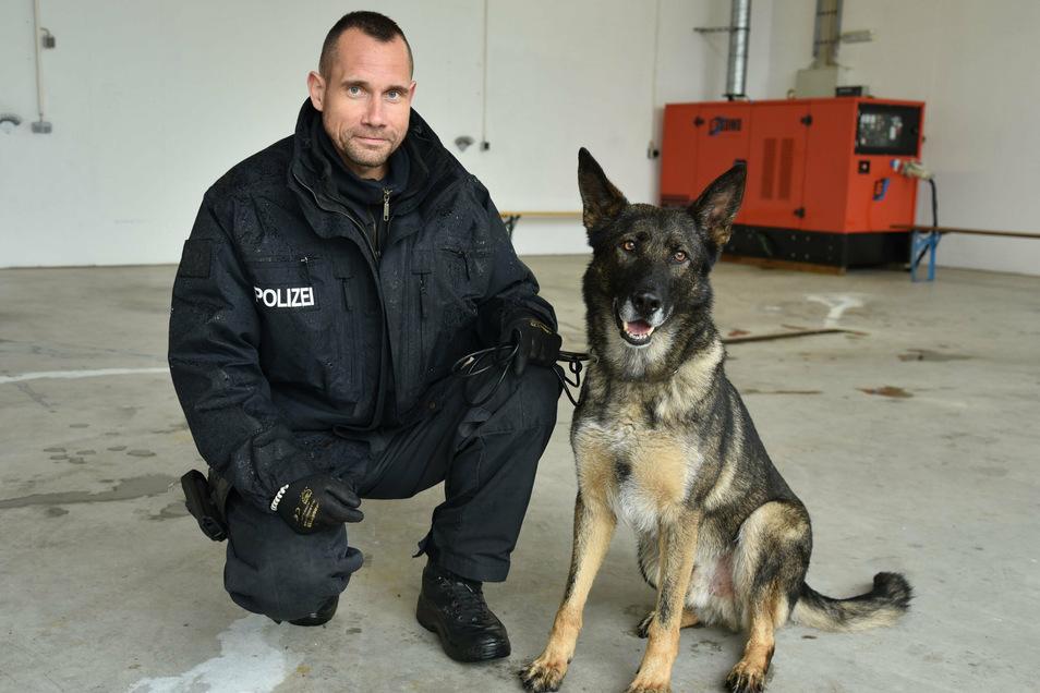 Polizeihund Max der Polizeidirektion Leipzig und sein Hundeführer. Der Suchhund an Personen ist speziell zur Suche nach Betäubungsmitteln an Menschen ausgebildet.