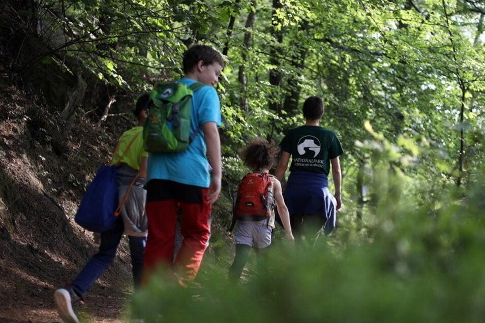 Ein Schultag im Schatten des Liliensteins: Waldjugendspiele im Nationalpark.