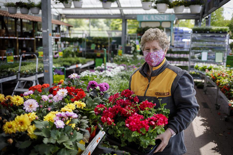 Petra Symank arbeitet in der Gartenabteilung des Hornbach-Gartenmarktes in Görlitz. Vor allem Blumenpflanzen für Balkon und Terrasse stehen jetzt hoch im Kurs bei den Kunden. Auch für die Mitarbeiter ist jetzt Mundschutz Pflicht.