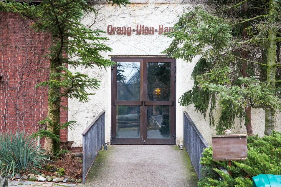 Das Orang-Utan-Haus im Dresdner Zoo muss dringend erneuert werden.
