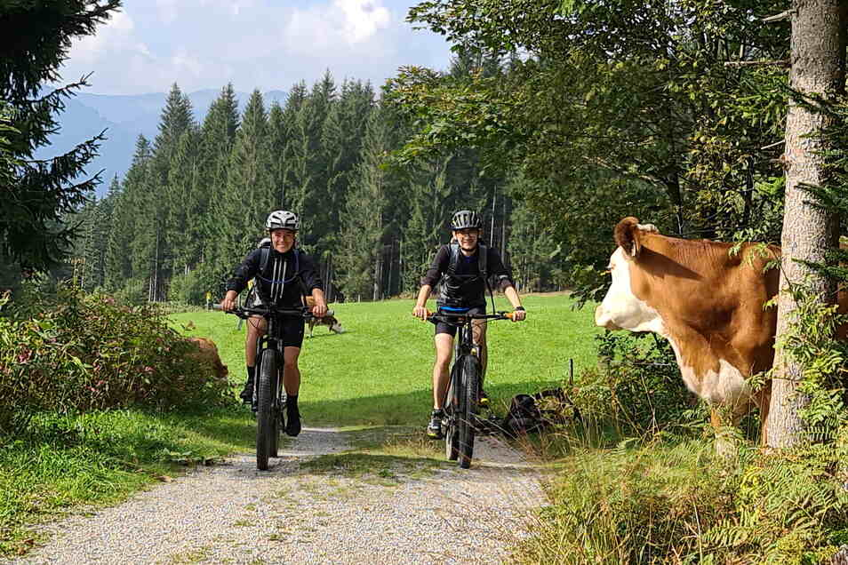 Die Kuh ist den Anblick vermutlich schon gewöhnt: Denn KAT Bike gibt es seit 2017.