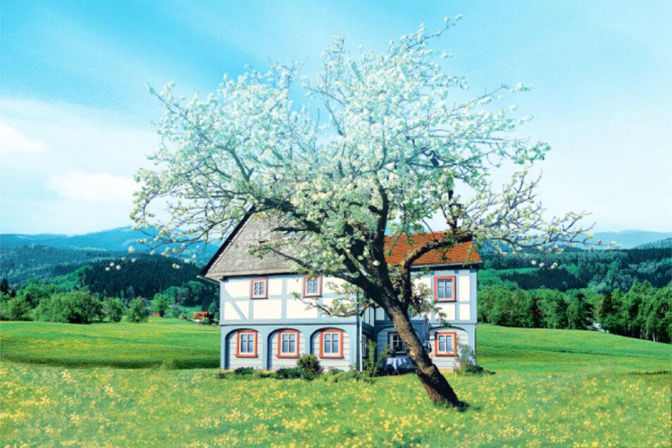 Ein typisches Umgebindehaus aus dem Oberlausitzer Bergland ist das Wahrzeichen der Oppacher Mineralquellen.