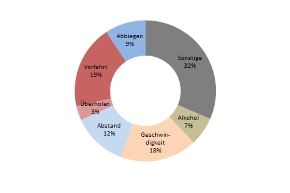 Das Diagramm zeigt die Unfallursachen im Jahr 2020.
